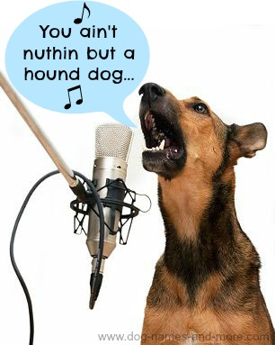 Elvis The Singing Dog Sings
