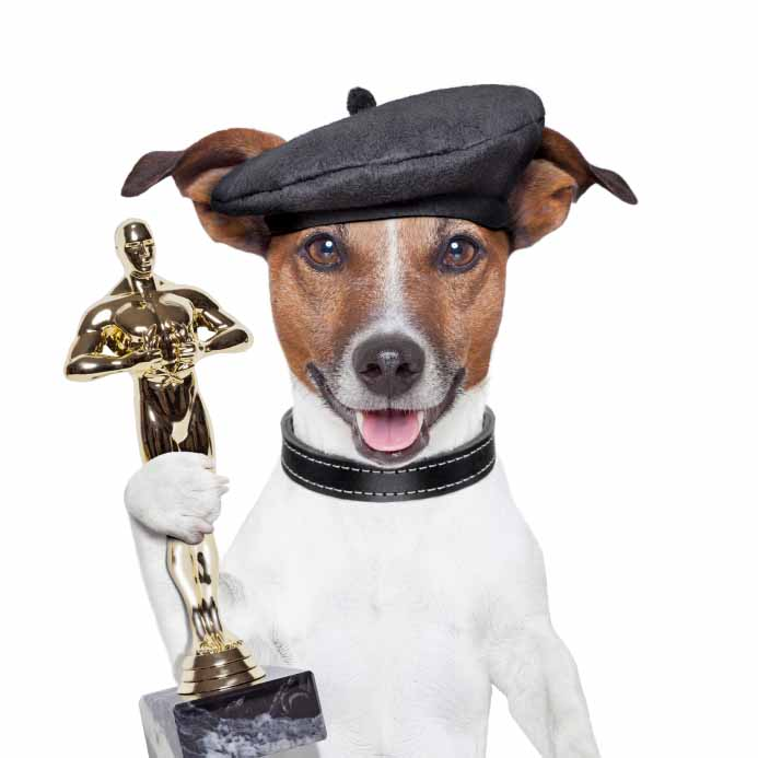 Famous dog accepting an award